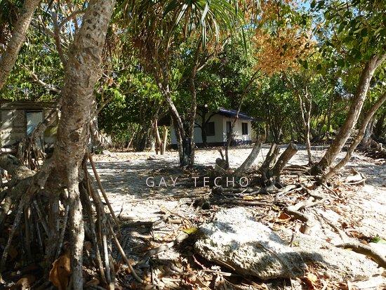 Balicasag Island, Philippines: FEW HOUSES!