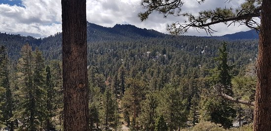 Palm Springs Aerial Tramway: 20181008_125654_large.jpg
