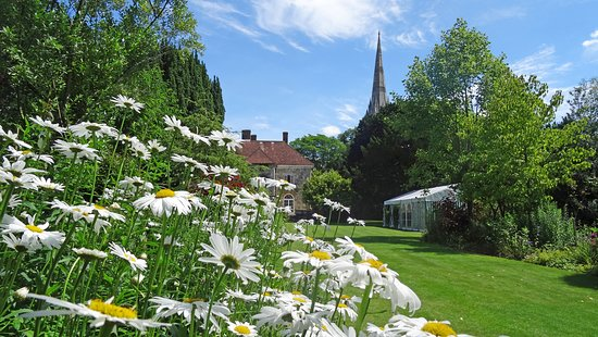 View of Salisbury Cathedral from Arundells