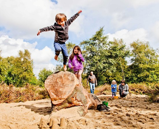 North York Moors National Park, UK: Natural adventure play area at Sutton Bank Photo by Chris J Parker