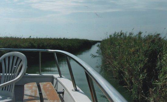 Navigare nel delta del po foto di bagno ristorante levante 68