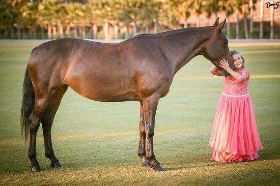 Polo Valley: Equestrian