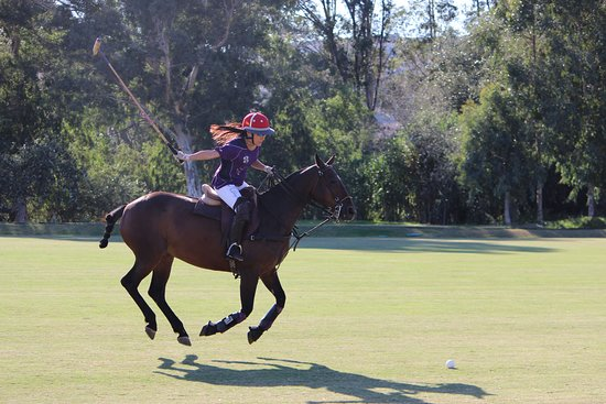 Polo Valley: Learn to play