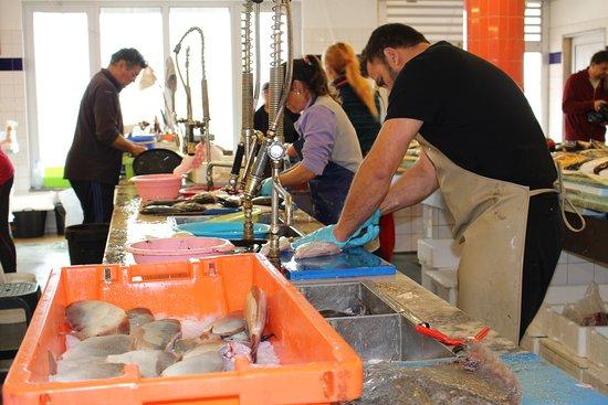 Costa Nova, โปรตุเกส: A arranjar o peixe...