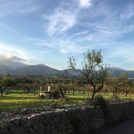 Selva, Spain: photo3.jpg