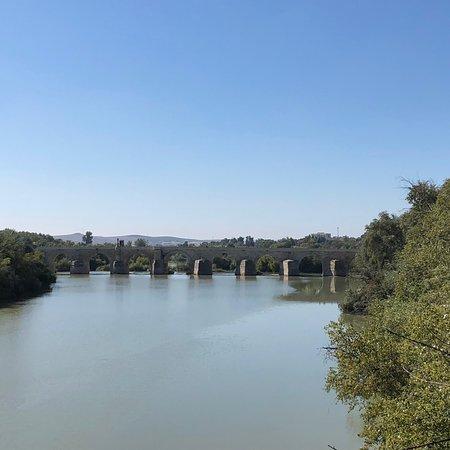 Nette Brücke / Wohl ein Muss