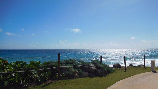 Hyatt Ziva Cancun Photo
