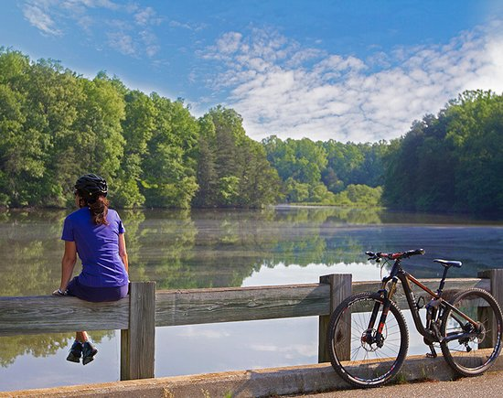 Mooresville Convention and Visitors Bureau: Lake Norman State Park is one of our most popular attractions, offering hiking, swimming, biking