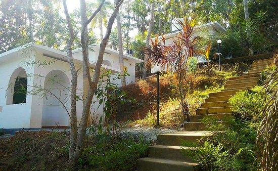 Agnihotra Yoga Retreat