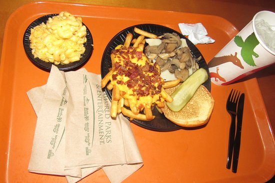 Tom's mushroom chhese-burger and sides