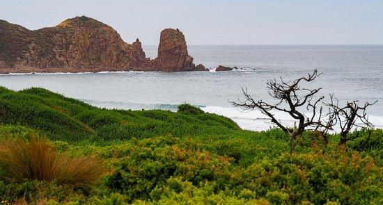 Cape Woolamai enroute to the Pinnacles