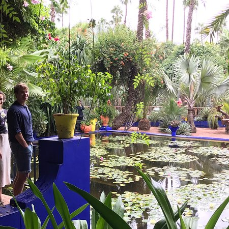 tripadvisor gives a certificate of excellence to accommodations attractions and restaurants that consistently earn great reviews from travelers - Majorelle Garden