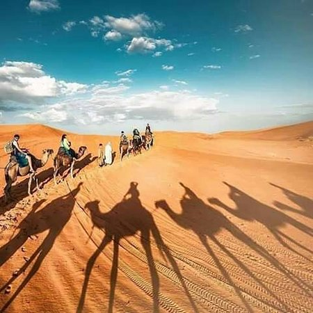 Travel All Morocco