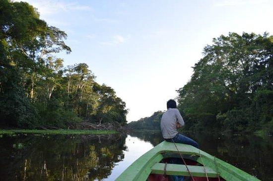 Iquitos, Pérou : Iguana Lodge