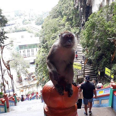 Batu Caves: IMG_20181011_170828_965_large.jpg