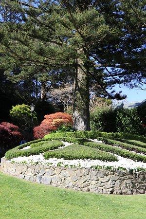 Wellington Botanic Garden: 20181007194806_IMG_6250_large.jpg