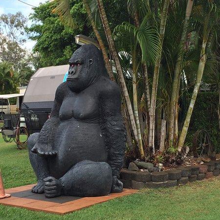 Sarina, Australien: photo1.jpg
