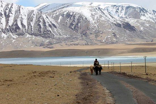Exsul Travel: Ladakh
