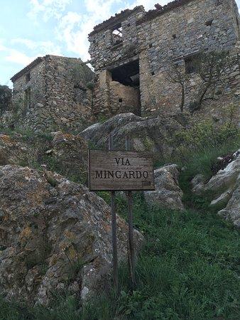 Centola, Italie : vai mingardo