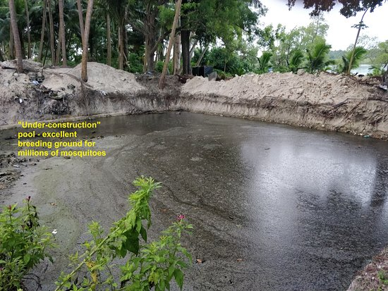 Havelock Island Beach Resort: Under-construction pool area , breeding ground for scores of mosquitoes!!