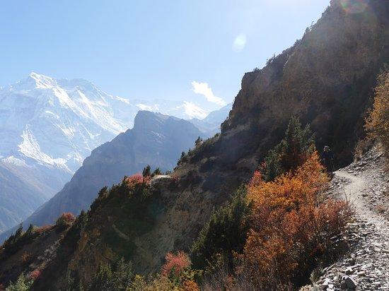 Gokyo Treks and Expedition: Around Annapurna trek