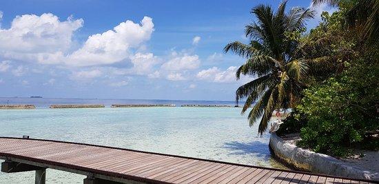 Ellaidhoo Island Foto