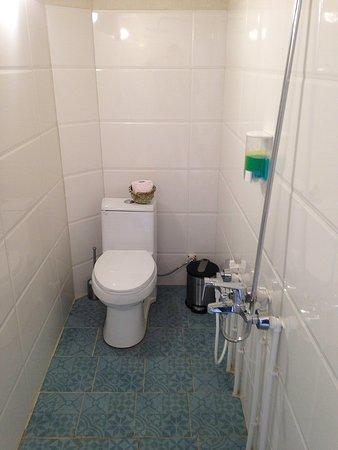 Mesr, Iran: Enclosed bathroom & western wc @ Pazirik Ecolodge