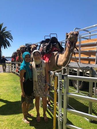 Perth speed dating llama bar