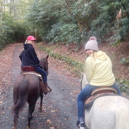 Best ride ever!! - Picture of Vx3 Trail Rides, Blowing Rock