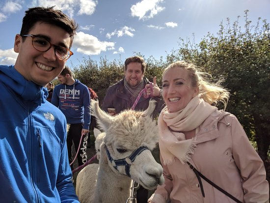 The Alpaca Trekking Centre
