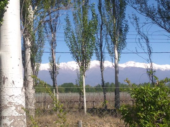 Colonia Las Rosas, Argentina: IMG_20181015_104029156_large.jpg