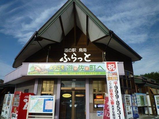 Yuza-machi, Nhật Bản: 道の駅鳥海 外観