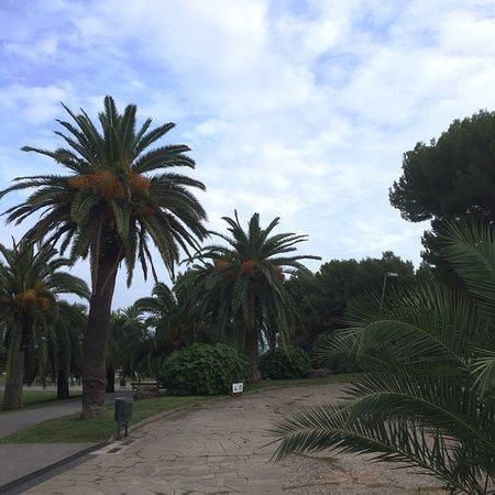 Joli Parc de Montjuic