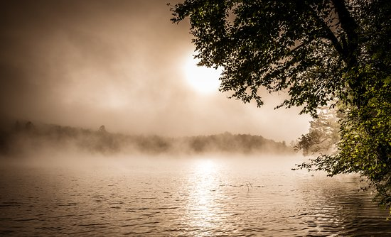 Groton, Vermont: Early morning walk around Ricker Pond in Vermont. Plenty of places to stay close by if you ever visit!