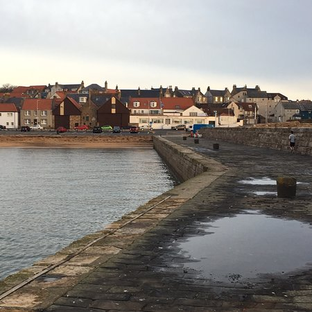 Anstruther Harbour Photo