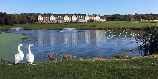 Broxton, UK: Hotel over looking the 17th hole Nicklaus course