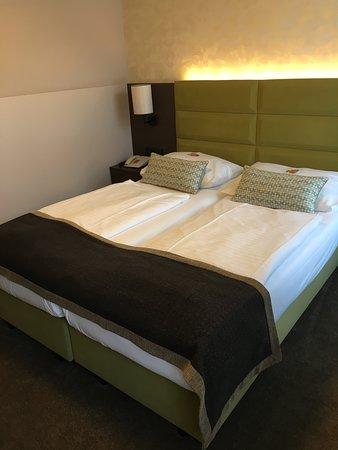 Hotel Drei Kronen: Room 301