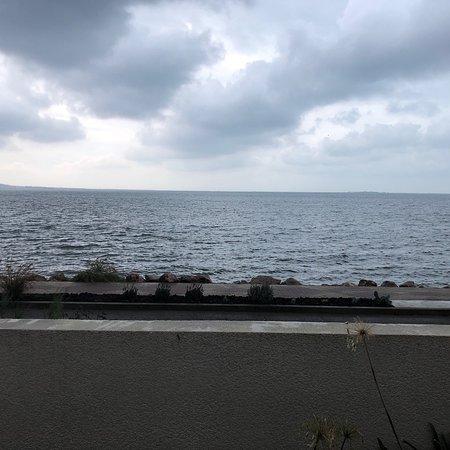 Le calme au bord de l'étang de Thau