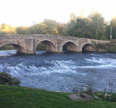 Bickleigh Bridge and Weir