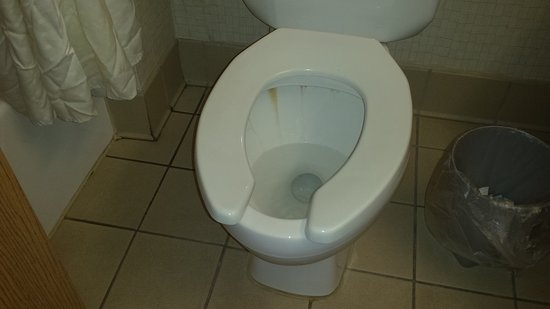 Kendallville, IN: how clean the toilet was when we showed up