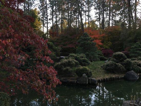 Parque Manito: Japanese Garden