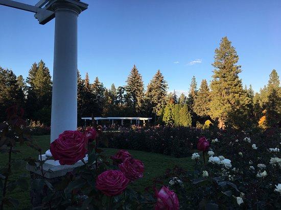 Parque Manito: Rose Garden