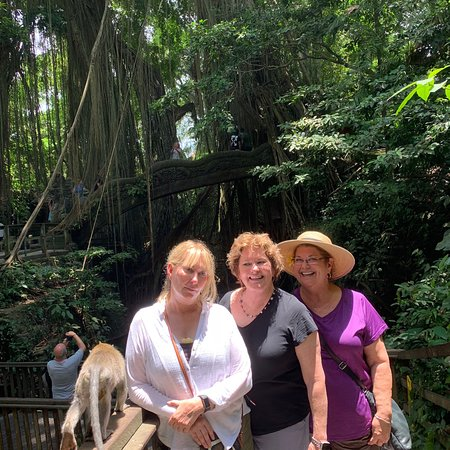 Sacred Monkey Forest Sanctuary: A fun day interacting with the monkeys.  My friend tripped and screamed which scared a monkey wh