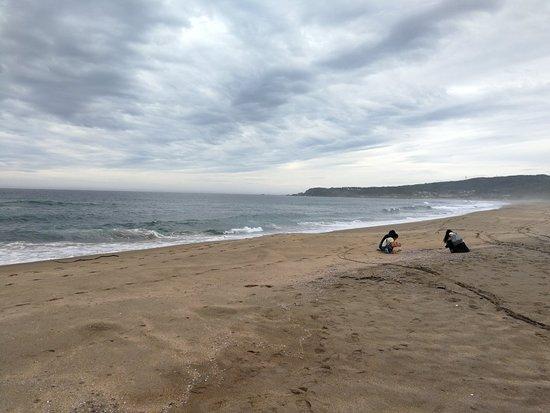 Tanesashi Coast: IMG_20180824_105211_large.jpg