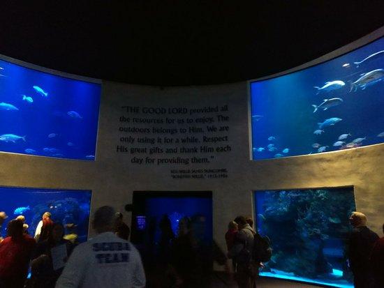 Johnny Morris' Wonders of Wildlife National Museum and Aquarium Fotografie