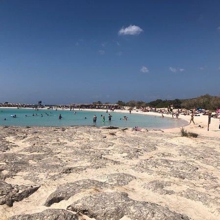 Playa de Elafonisi: photo5.jpg