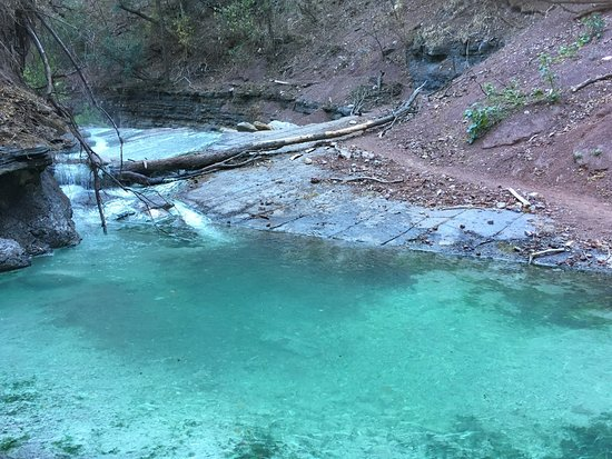 Calilegua, Argentina: Aguas termales naturales