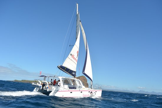 Scape 39' catamaran for superb sailing