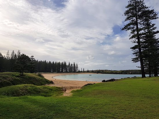Emily Bay with it's backdrop of Norfolk Island Pines