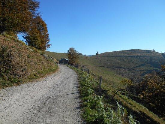 Fellering, Frankrike: Le chemin d'accès